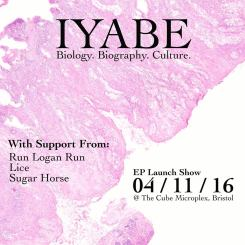 Iyabe, 4th November 2016