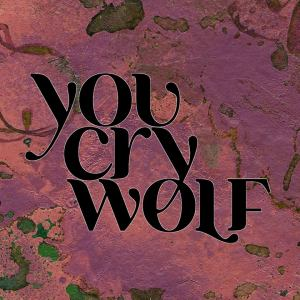 You Cry Wolf