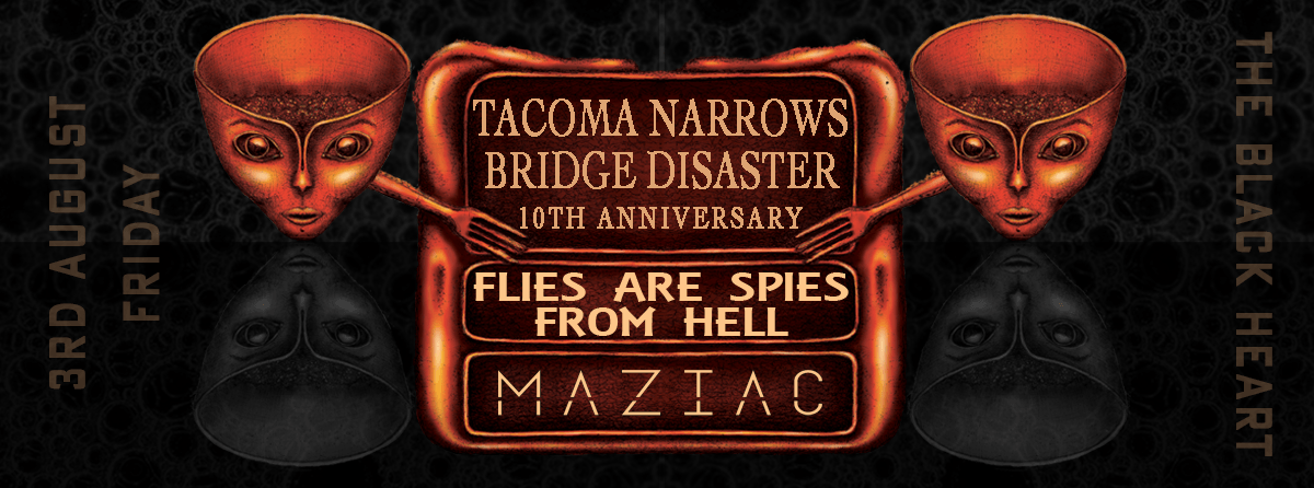 Tacoma Narrows Bridge Disaster | Misfit City