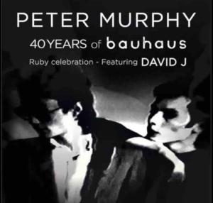 Peter Murphy tour with David J, 2018