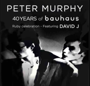 Peter Murphy tour with David J, 2018